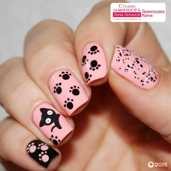 Дизайн кошачьи лапки