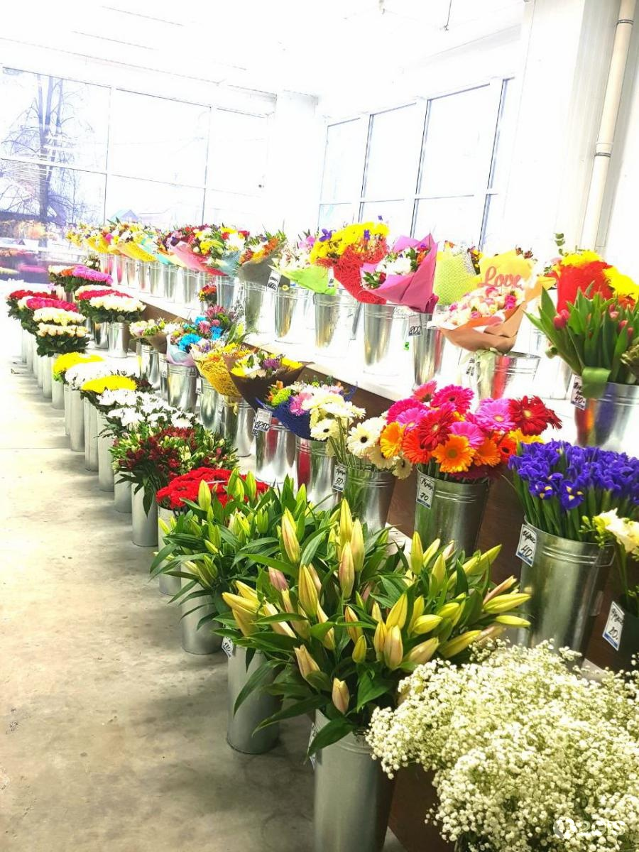 Цветов оранжереях, купить цветы в перми