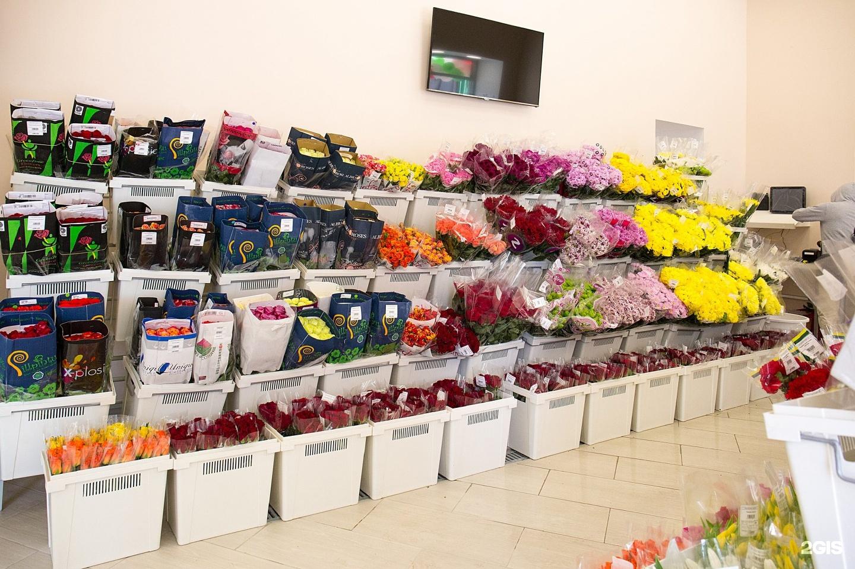 Цена цветы оптом украина купить, цветы одесса