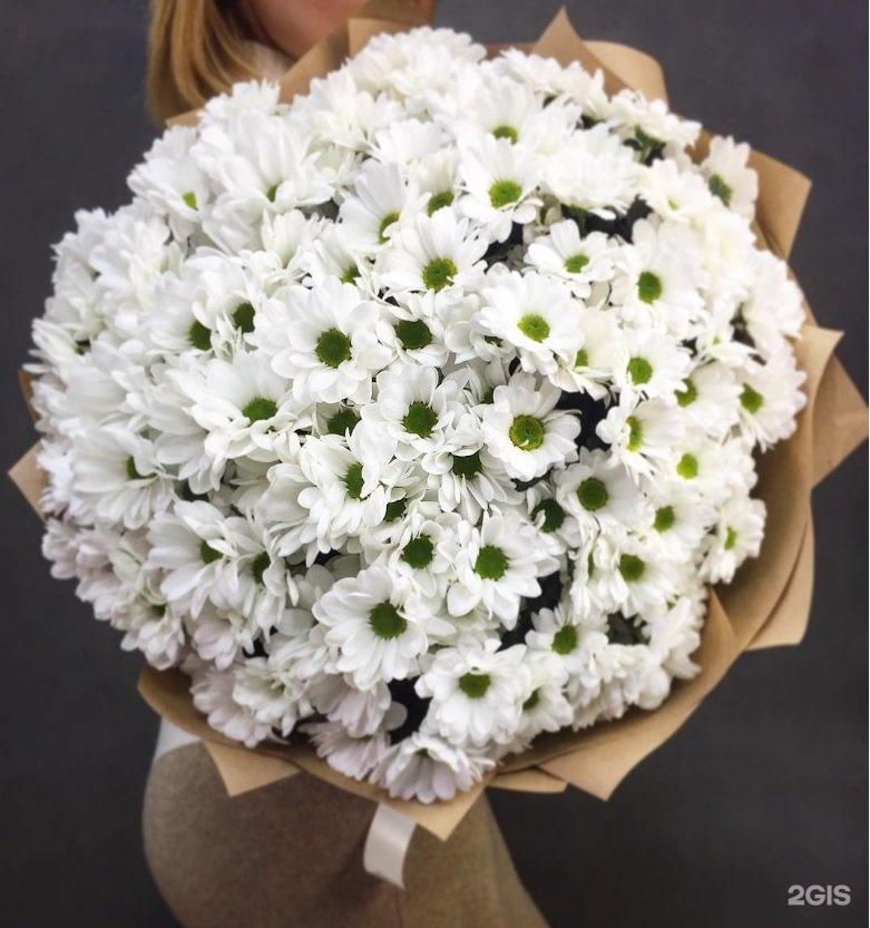 Букет, букет из белых хризантем большой