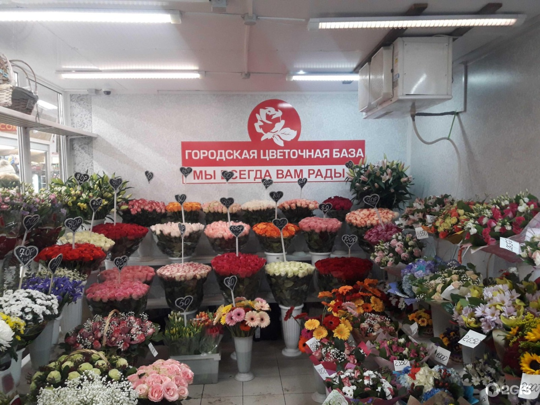 Цветы оптовая база спб московское шоссе, цветов