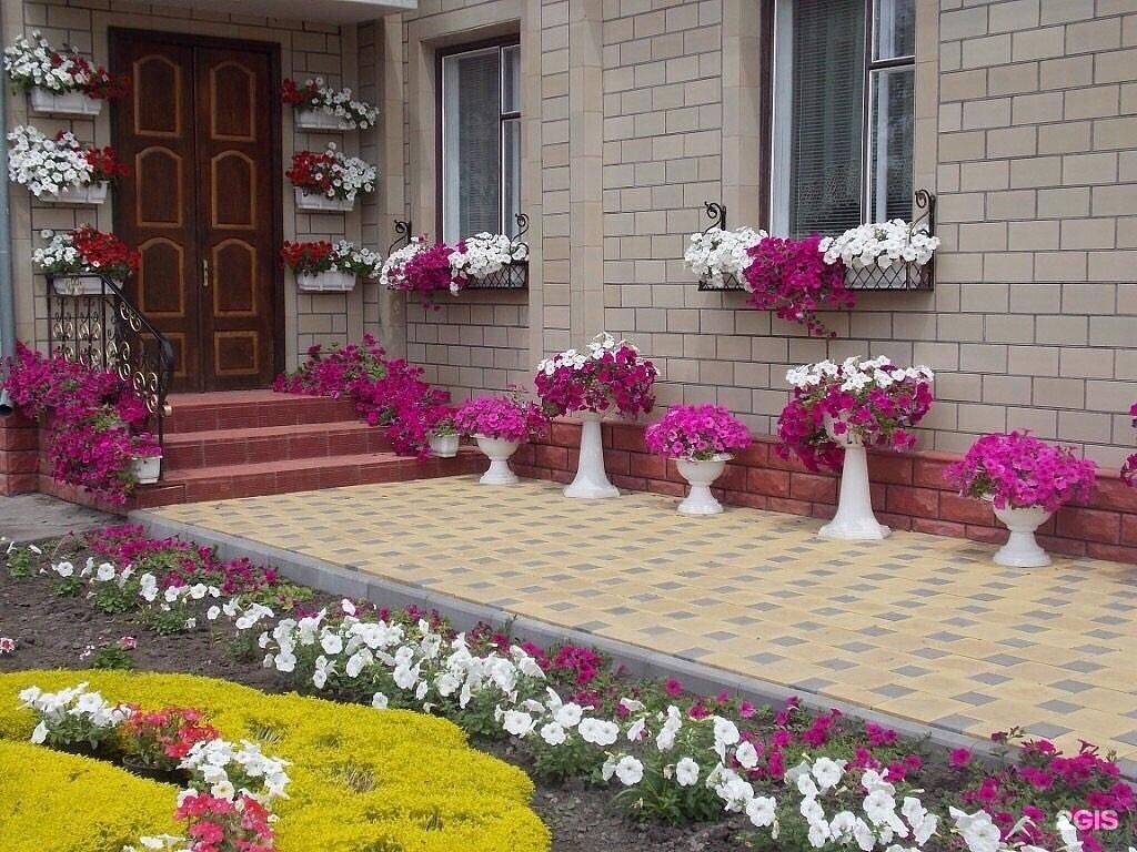 Красивый двор с цветами.