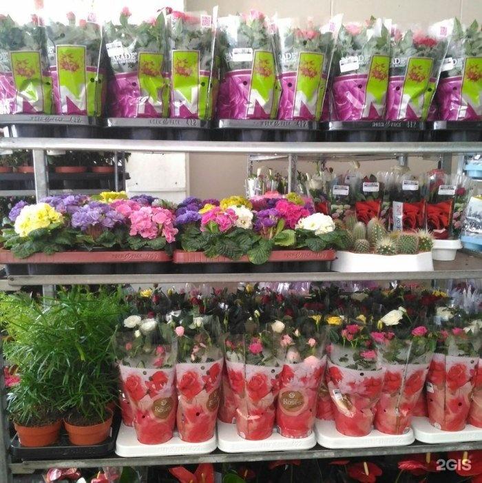 Екатеринбург цветы мини оптом, доставкой