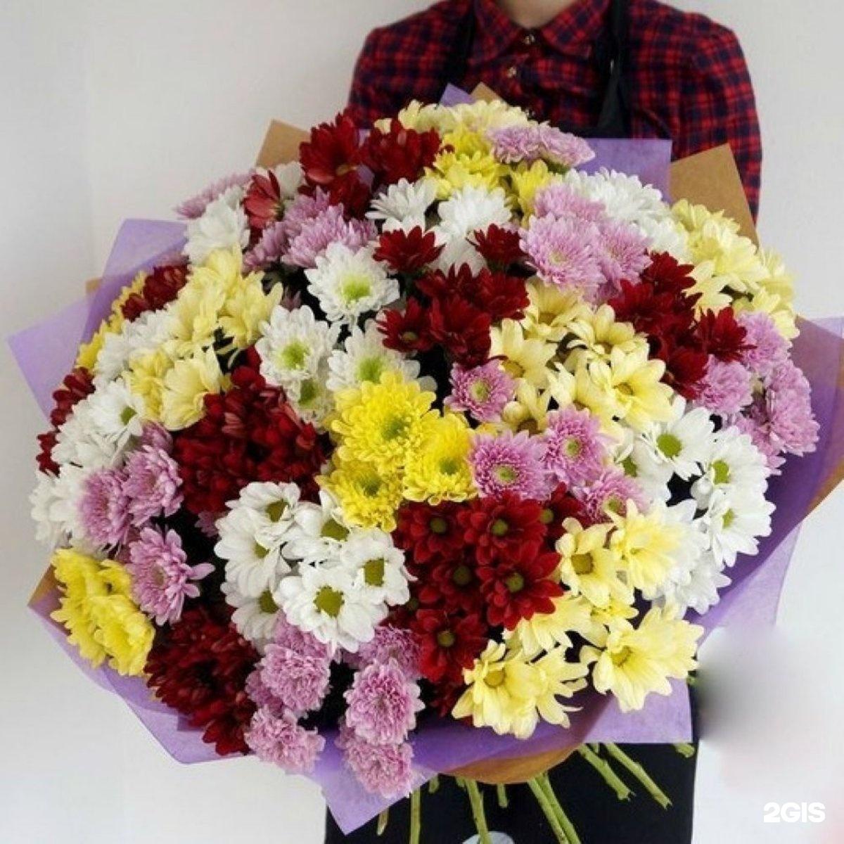 Большие букеты из хризантем фото красивые, мелким оптом